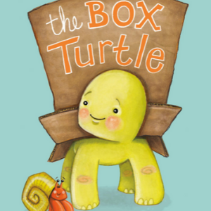 The Box Turtle The 25 best children's book of 2020
