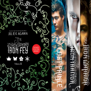 The Iron Fey Boxed Set 2: The Lost Prince,The Iron Traitor,The Iron Warrior,The Iron Legends 30 Most Popular Fairy Books
