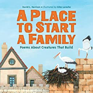 A Place to Start a Family: Poems About Creatures That Build   Top 25 Best 2nd Grade Reading Books
