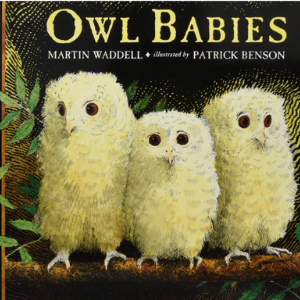 Owl Babies (Big Books) 30 Recommended Best Books for 3 Year Olds Kids