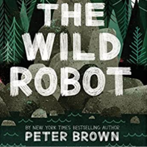 The Wild Robot: '2016/04/05 25 Highly Recommended Best Chapter Books For 4th Graders