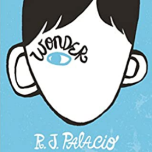 Wonder 25 Highly Recommended Best Chapter Books For 4th Graders