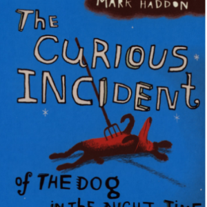 The Curious Incident of the Dog in the Night-time Top 25 Amazing Books Like Ready Player One