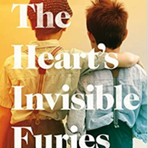 The Heart's Invisible Furies  Top 25 Amazing Books Like Ready Player One