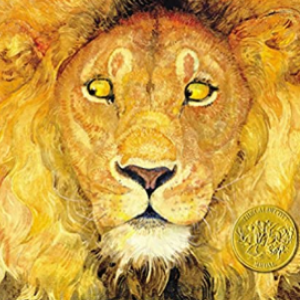 The Lion & the Mouse Top 25 Amazing Wordless Picture Books