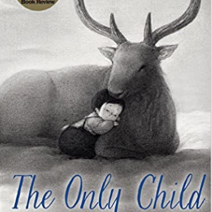 The Only Child Top 25 Amazing Wordless Picture Books